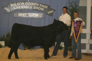 Grand Champion Bull Black Pride