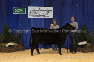 TENNESSEE AGRIBITION